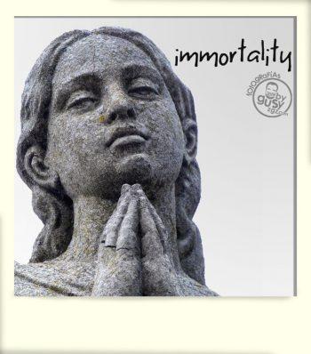 polaroid-album-IMMORTALITY